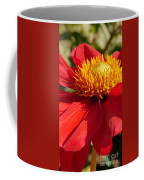 Red Dahlia Coccinea Coffee Mug