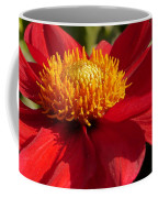 Red Dahlia Starlet Coffee Mug