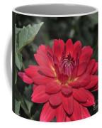 Red Dahlia Coffee Mug