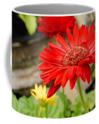 Red Daisy Coffee Mug