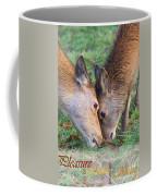 Red Deer  Cervus Elaphus  Head To Head Coffee Mug