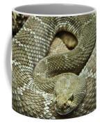 Red Diamond Rattlesnake 3 Coffee Mug