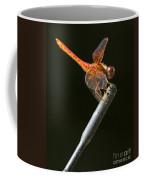 Red Dragonfly On An Antenna Coffee Mug