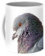 Red-eyed Pigeon Coffee Mug