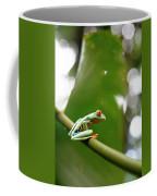 Red Eyed Tree Frog, Agalychnis Coffee Mug