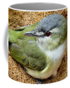 Red Eyed Viero Coffee Mug