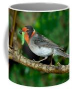 Red-faced Warbler With Caterpillar Coffee Mug