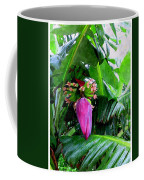 Red Flower Of A Banana Against Green Leaves Coffee Mug
