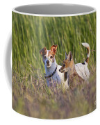 Red Fox Cub With Jack Russel Coffee Mug