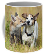 Red Fox Cub With Jack Russell Coffee Mug