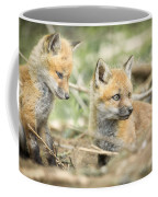 Red Fox Kits Coffee Mug