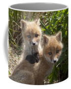 Red Fox Kits Playing Alaska Coffee Mug