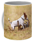 Red Fox Playing With Jack Russell Coffee Mug