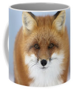 Red Fox Staring At The Camerachurchill Coffee Mug