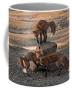 Red Foxes Vulpes Fulva Coffee Mug
