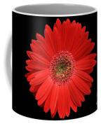 Red Gerber Daisy #2 Coffee Mug