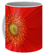 Red Gerber Delight Coffee Mug