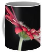 Red Gerbera 4 Coffee Mug