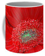 Red Gerbera Flower  Coffee Mug