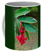 Red Ginger Chandelier Coffee Mug