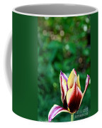 Red Gold And Green Coffee Mug