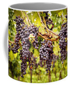 Red Grapes In Vineyard Coffee Mug