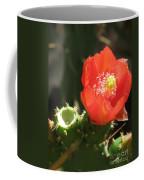 Hot Red Cactus Coffee Mug