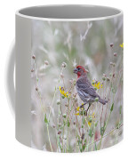 Red House Finch In Flowers Coffee Mug