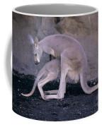 Red Kangaroo. Australia Coffee Mug