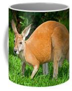 Red Kangaroo Coffee Mug