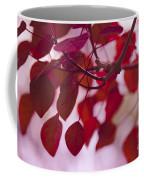 Red Leaves - Euphorbia Cotinifolia - Tropical Smoke Bush Coffee Mug