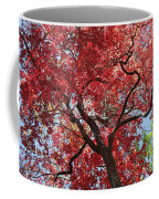 Red Leaves On Tree Coffee Mug