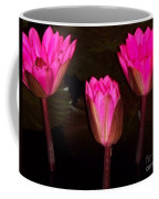 Red Lilies At Night Coffee Mug