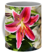 Red Lilly 8095 Coffee Mug
