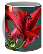 Red Lily Coffee Mug
