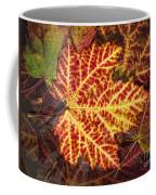 Red Maple Leaf Coffee Mug