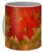 Red Maple Coffee Mug