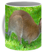 Red Necked Wallaby Coffee Mug