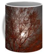 Red Oak At Sunrise Coffee Mug