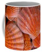 Red Orange Sea Shells Coffee Mug