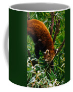 Red Panda Tree Climb Coffee Mug