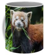 Red Panda With An Attitude Coffee Mug