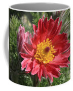 Red Pasque Flower Coffee Mug