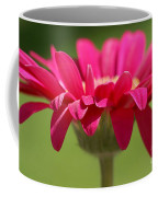 Red Pink Daisy Coffee Mug