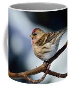 Red Poll Coffee Mug
