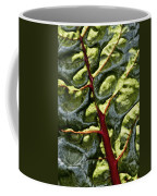 Red River Through Green Hills Coffee Mug