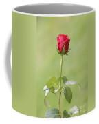 Red Rose Bud 1 Coffee Mug