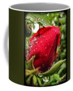 Red Rose Bud With Water Drops Coffee Mug