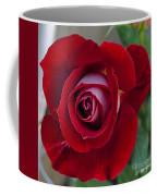 Red Rose Flower Coffee Mug
