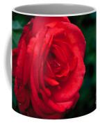 Red Rose Profile Coffee Mug